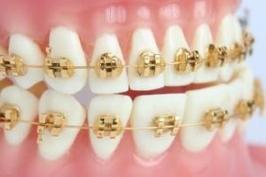 dental-05